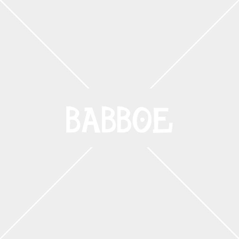 Babboe eerste fietsmerk ooit in Twinkle 100
